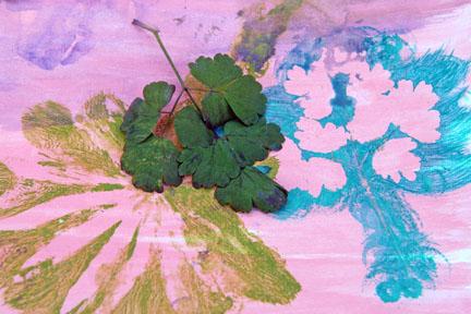 Art ruffle leaves