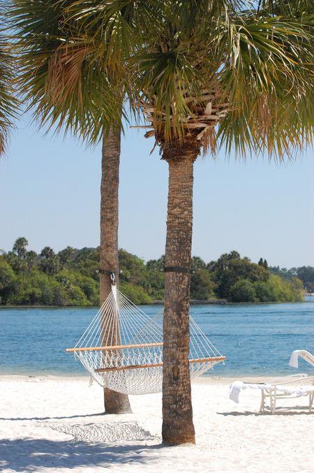 Grand Floridian Hammock