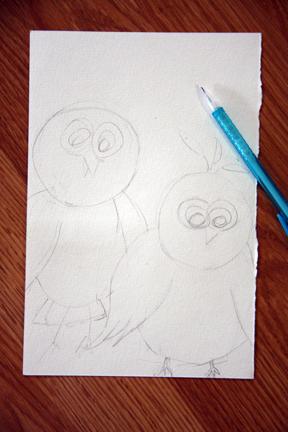 Sketch owls